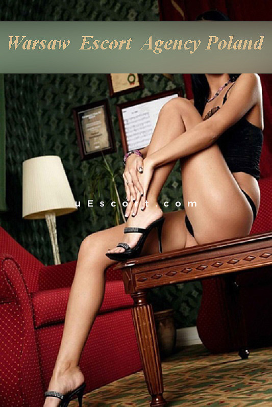 polish escort girls chat service